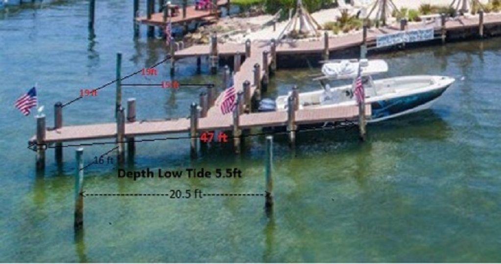 Dolphin Cove Florida Keys